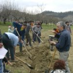Io Faccio Così #42 – Fabio Pinzi e la Permacultura: progettare sistemi sostenibili