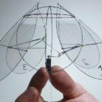 Biomimesi, la scienza che ruba idee alla natura