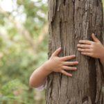 Educazione ambientale: dal prossimo anno si studierà in tutte le scuole