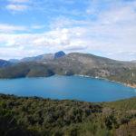 Cyclolenti in Grecia: la monaca nera