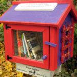 Little Free Library: la biblioteca diffusa che promuove la cultura e il senso di comunità