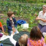 Orti didattici: l'amore per la natura e il cibo genuino si imparano a scuola