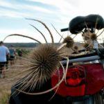 Io Faccio Così #70 – CicloMurgia: turismo su due ruote per valorizzare il territorio