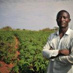 Filiere solidali e produzione dal basso contro lo sfruttamento dei migranti in agricoltura