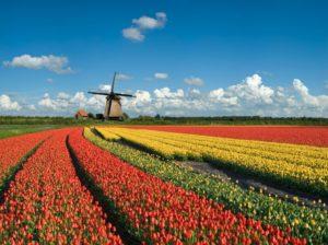 bv-starten-bv-oprichten-in-nederland
