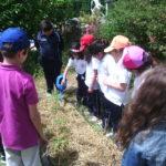 Imparare dall'orto: in Sicilia un'Aula Permanente di Ecologia