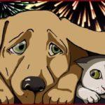 Natale: come proteggere gli animali nei giorni di festa