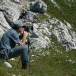 Abolito il Corpo forestale: viene assorbito dai Carabinieri