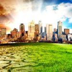 WWF: 2015, anno nobile per l'ambiente
