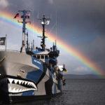 Sea Shepherd approda a Venezia: tra i volontari di bordo anche un'italiana