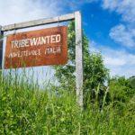 Umbria, un'immersione nella comunità eco-sostenibile di Monestevole