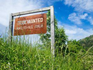 La cooperativa Tribewanted sviluppa comunità ecosostenibili in giro per il mondo