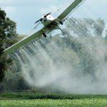 Glifosato, il pesticida cancerogeno potrebbe essere autorizzato