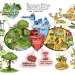 Il mercato di piazza finisce online: così Loonity promuove il consumo locale