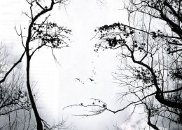 donna_albero_ant