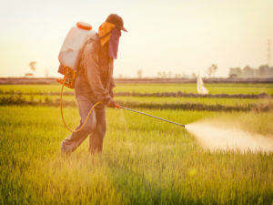 plan le foll pesticides gouvernement agriculture