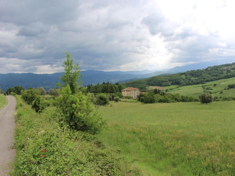 Nel Mugello, 35 chilometri fuori Firenze, presso Borgo San Lorenzo, si sviluppa il progetto San Cresci
