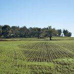 Legge sul consumo di suolo: un'occasione mancata
