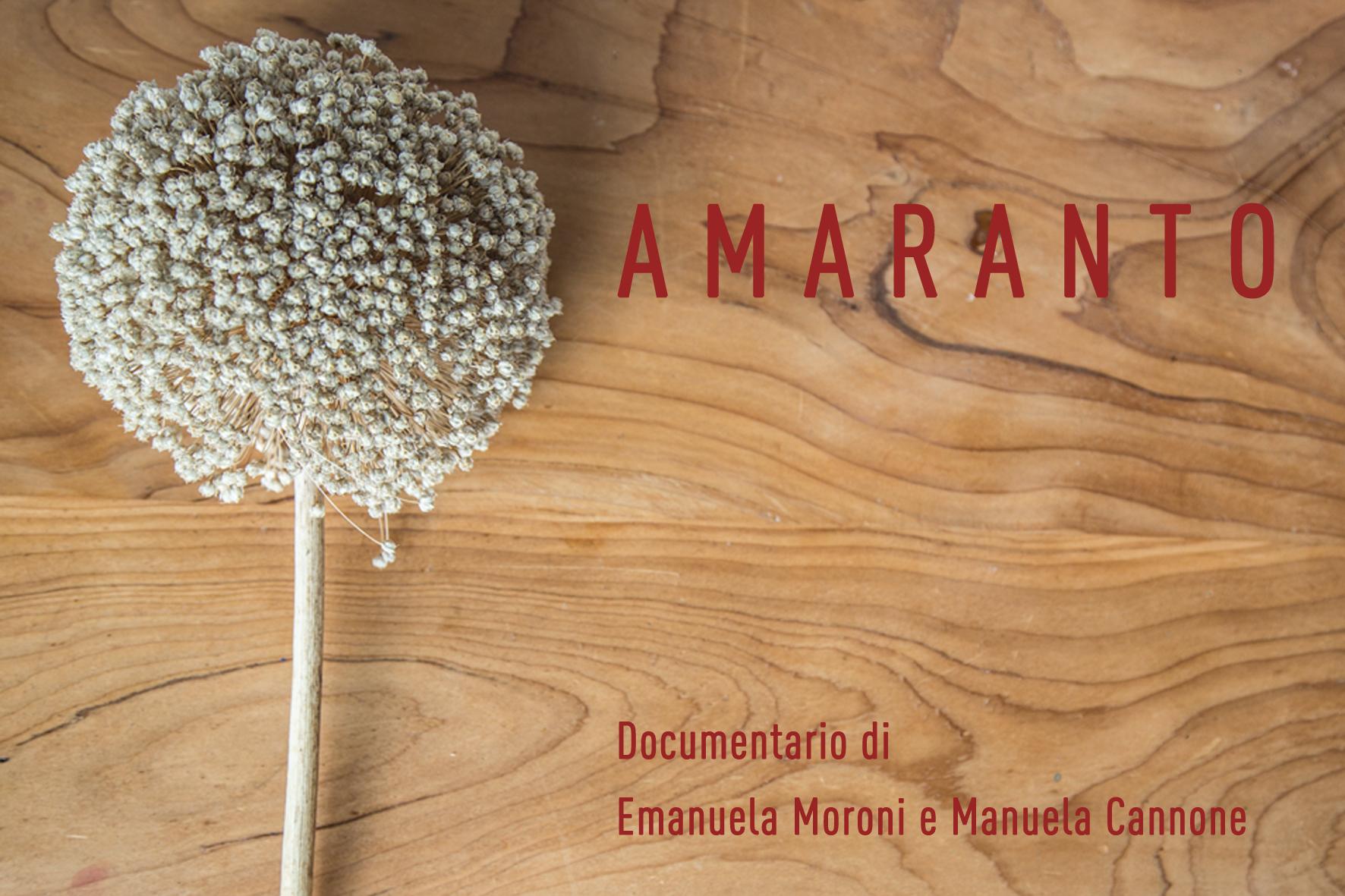 cartolina_amaranto