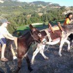 #viaggiareispirati 20: Trekking con gli asini, per conoscerli e rispettarli