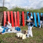 Romaltruista, la rete del volontariato nella capitale