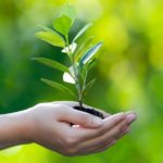 #Visione 2040 – Ambiente: uscire dalla cultura antropocentrica, verso il consumo di suolo zero