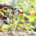 Terra e Partecipazione: a Brescia un bosco sociale da salvare