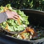 Spreco alimentare: cosa prevede la nuova legge?