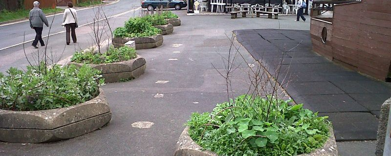 """Piante commestibili nelle aiuole sparse in ogni angolo della città: è questo il progetto """"Incredible Edible"""""""