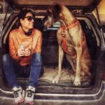 I veterinari etici di Armonie Animali