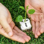 Emilia Romagna, energia rinnovabile per 200 enti pubblici