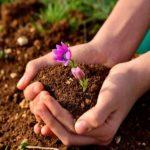 """""""Il suolo diventi un bene comune"""""""