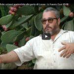 Io faccio così #148 – Masseria Miele, un'oasi sostenibile alle porte di Lecce