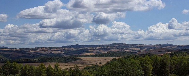 Summer-Italy-Agriculture-Landscape-Tuscany-Nature-2019215