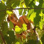 Radici nel cielo: un documentario che racconta l'Italia contadina
