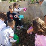 Orti nelle scuole, sociali e condivisi: tornare alla terra fa bene!