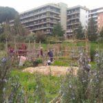 Ortincomune, una rete cittadina per la rigenerazione urbana