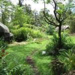 Permacultura, la progettazione sostenibile di un mondo che cambia