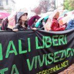Al via il processo agli attivisti anti-vivisezione