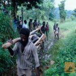 La rivoluzione delle noci di cocco è stata la prima rivoluzione ecologica della storia