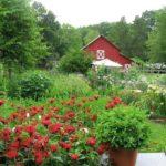 Un fattoria biologica come premio per un concorso di poesia