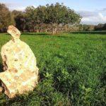 In Salento nasce il Manifesto per l'Agricoltura Naturale