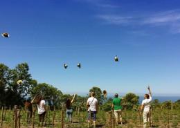 """Foto di Giuliana Scofano, località Fuscaldo (Cs), """"Be rural be happy!"""", foto dal contest #unfuturomaivisto promosso dalla Fondazione CON IL SUD"""