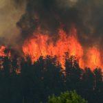 Incendi: in fumo oltre 75mila ettari