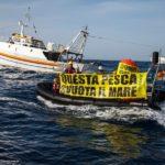 """""""Difendere il mare non è un crimine!"""""""