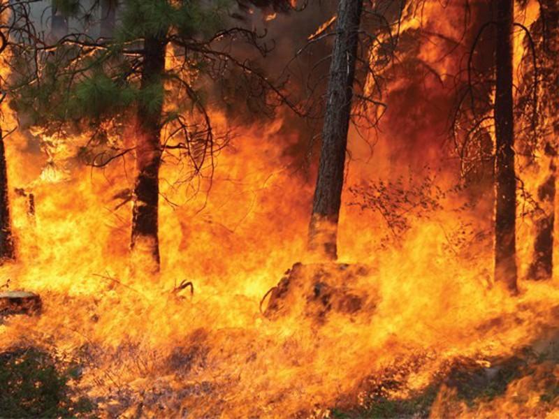 fire-spreading