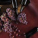 Wineleather, il tessuto vegetale dagli scarti del vino