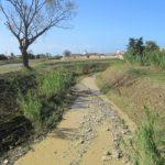 """Clima e alluvioni: """"Ripensare l'urbanistica per evitare i disastri"""""""