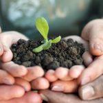 Coltiviamo Agricoltura Sociale: premi e borse di studio senza dimenticare le zone del sisma