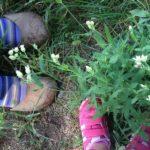 La Yurta nel Bosco: pedagogia dell'ascolto e della natura per esseri umani felici